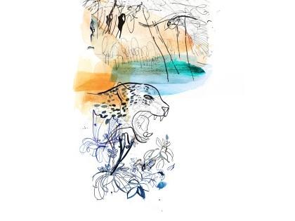 Rossetti Design, Illustrazione Alessandra Scandella