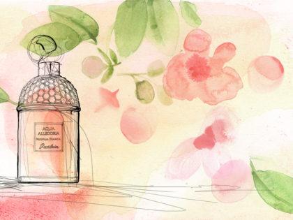 animazione_acquerello-profumo-alessandra-scandella