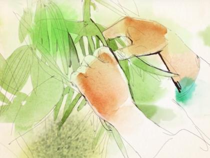Watercolor animation, Alessandra Scandella